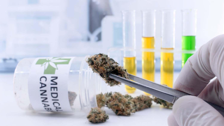 Feature | tweezers hold cannabis bud laboratory | Medical Marijuana Stocks To Watch Out For | Inside Your IRA | medical marijuana