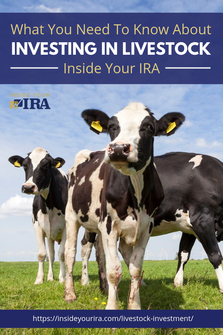 What You Need To Know About Investing In Livestock Inside Your IRA https://www.insideyourira.com/livestock-investment/